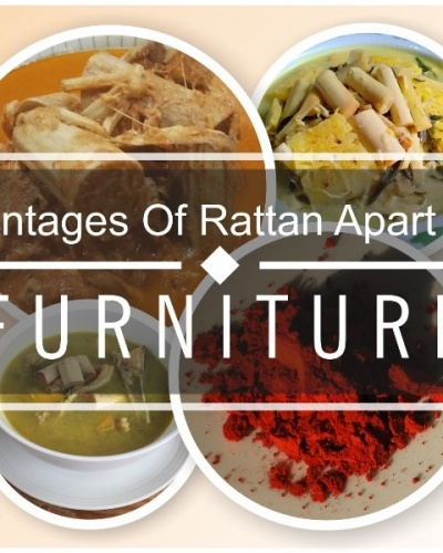 advantages of rattan
