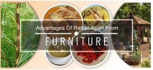 advantages of rattan